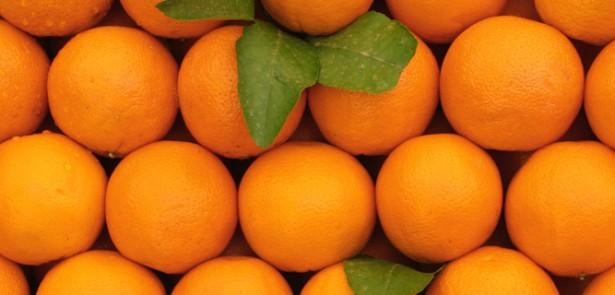 Seville Orange Marmalade | Food | The Moment Magazine