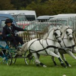 burghley game and country