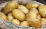 FOT-How-to-store-potatoes-for-web