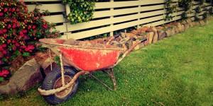 garden_crop