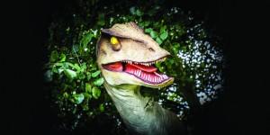 Raptor, Adventure Hunter Parties , Peterborough, Museum, Vivacity Peterborough